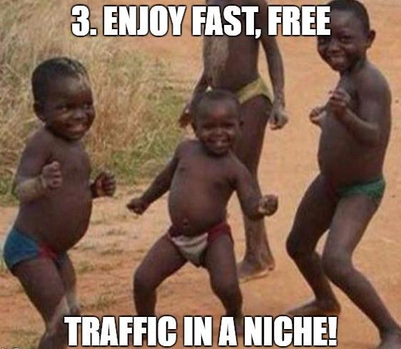 Meme Traffic Monster Review step 3